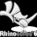 Corsi Rhinoceros